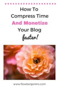 How to Monetize your blog faster