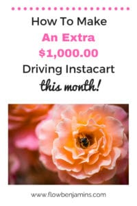 How to Make an Extra $1000 Doing Instacart This Month! –