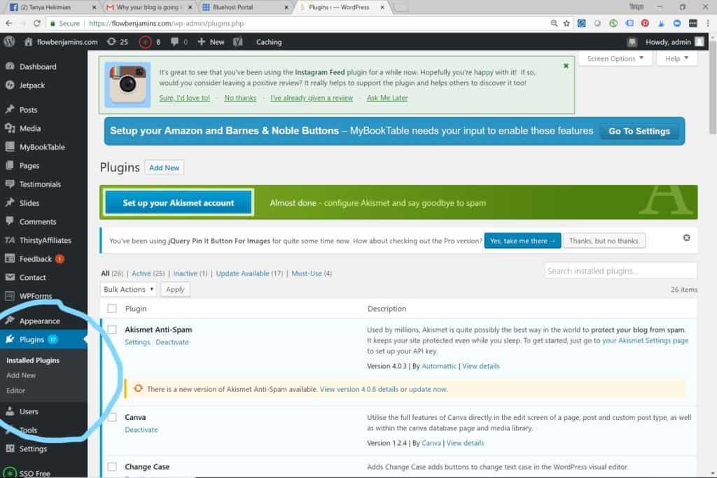 wordpress plugins, blogging, blogging tips, blogging for money