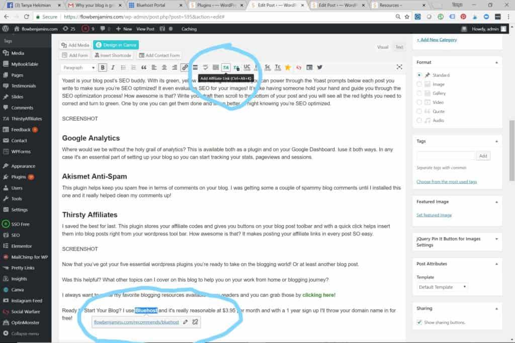 Affiliate marketing, blogging, plugin, blogging tips